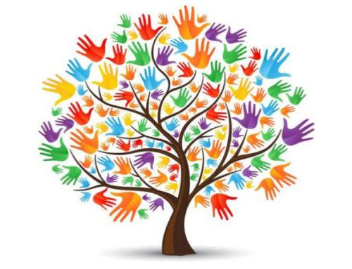 Entreprise Sociale, Emploi Et Jeunesse – Retour Sur Le Midi Pls